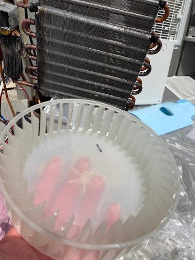 除湿器クリーニング